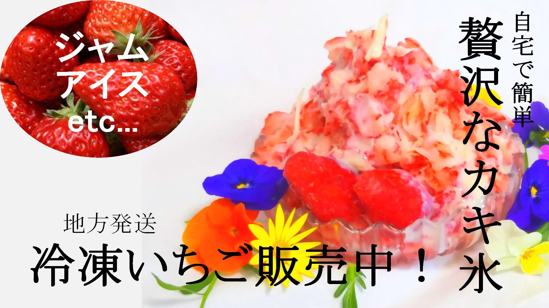 冷凍いちご販売中!!